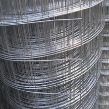 1/2 inch galvanized welded wire mesh/10 gauge galvanized welded wire mesh/6x6 concrete reinforcing welded wire