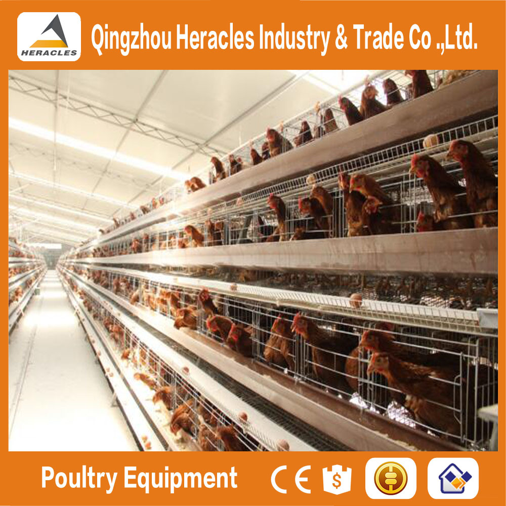 Alibaba trade assurance low cost high Quality Chicken Layer Cage Price Poultry Farm in Kenya