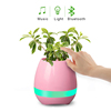 Innovation Touching Flower Singing Plant Interaction