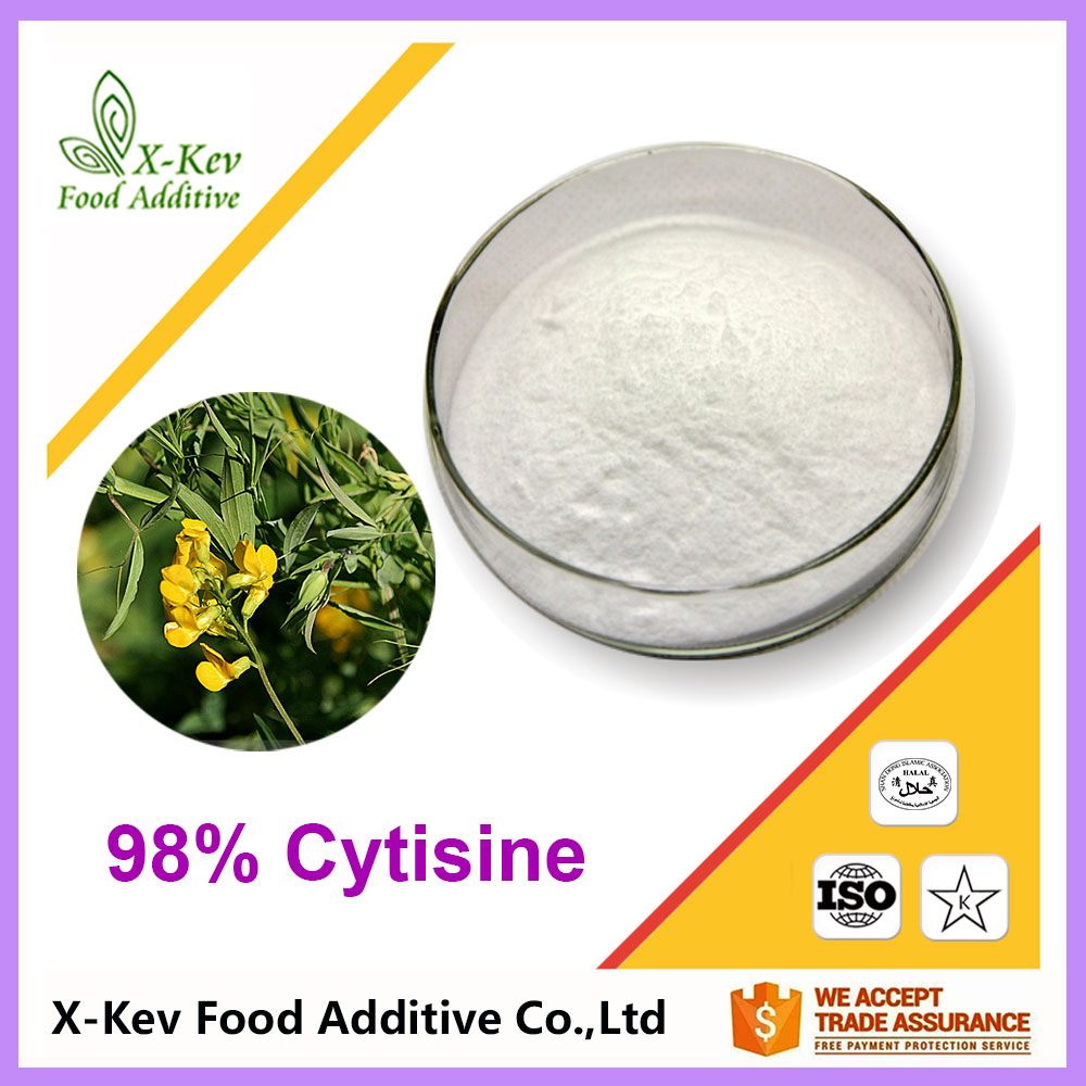 Natural Organic 98% Sparteine / Cytisine Powder