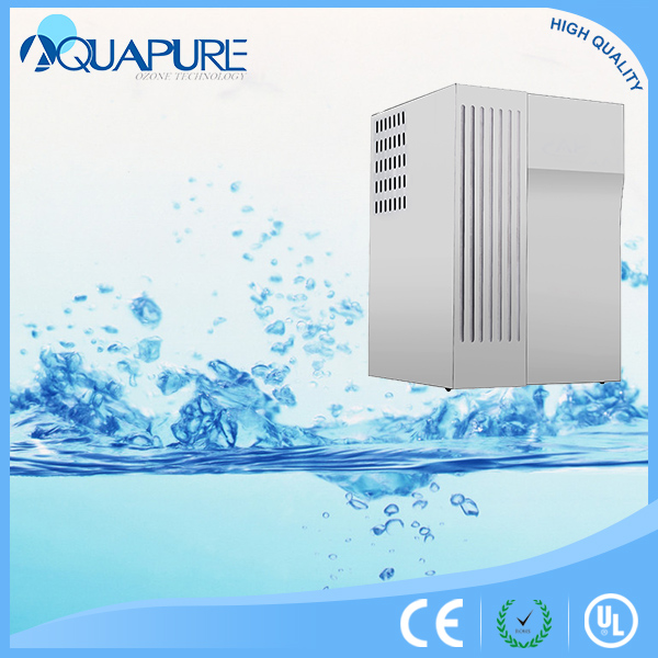 High pure oxygen ozone generator for bottle water