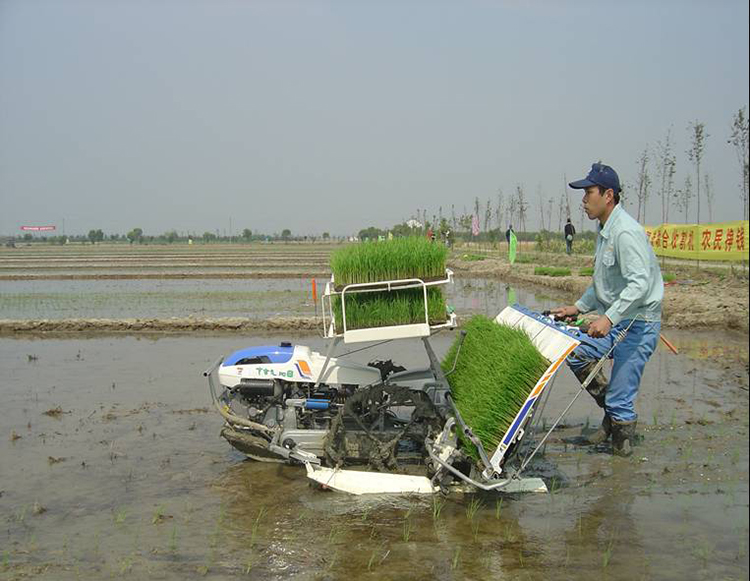 2018 new mini riding rice paddy transplanter for sale