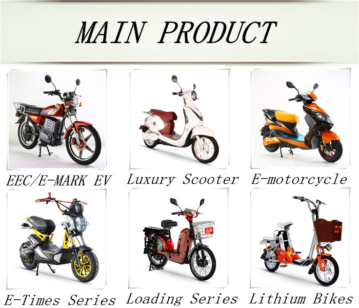 2015 dongguan tailg electric motorcycle long range