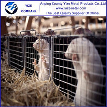 drinking water 316 stainless steel wire mesh mink cage