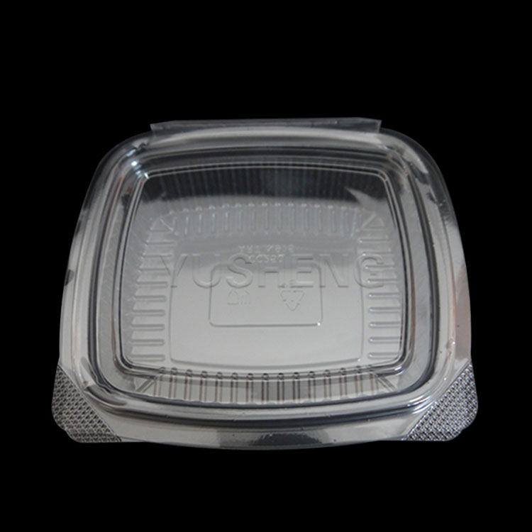 Wholesale disposable custom plastic packaging containers,pet food box