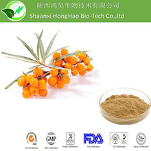 Sea Buckthorn Extract Powder/Hippophae Rhamnoides Extract Powder
