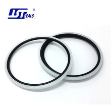 High performance custom size hydraulic rotary shaft PTFE seals