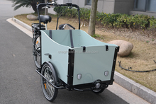 3 wheel electric cargo bike for family best selling electric cargo bike
