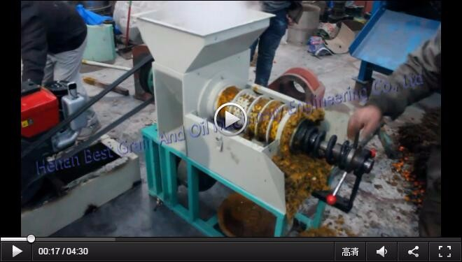 Professional crude palm oil press machine for palm fruit