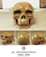 natural wood fossil skull