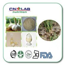 100% Pure Garlic Extract Powder Garlic Extract with Best Price
