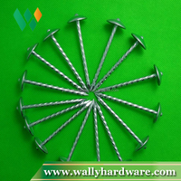 Ring shank all type steel roofing nails