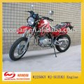 Motorcycle/Dirt Bike WJ250GY WJ-SUZUKI Engine