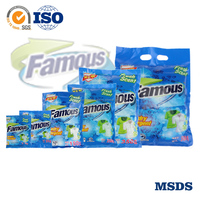 Famous Laundry Detergent Washing Powder