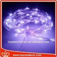 Holiday decoration mini bulb light string