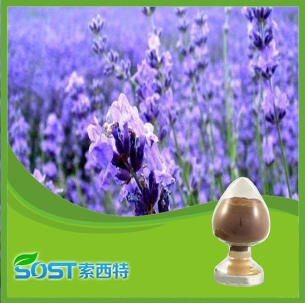 High Quality Alibaba China vanilla extract prices