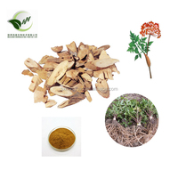 Chinese radix angelica root extract 10:1 20:1 powder in bulk