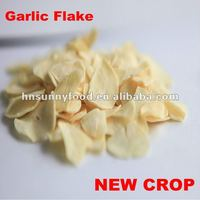 Professional Factory Supplier Natural Garlic Dehydration Plant