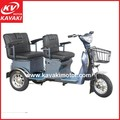 China Battery Tricycle With Passenger Seat / Family Self-using Small Mobile Electric Tourist Rickshaw