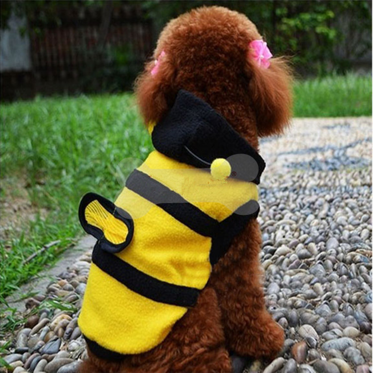 Fashion Little Bee pet dog clothes new arrrivel display pet clothes
