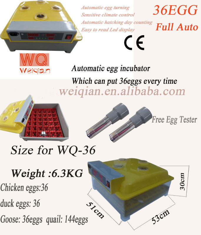 Full automatic domestic MiNi Chicken Bird Ostrich Duck Turkey Quail Goose eggs incubator Hatchery machine WQ-36