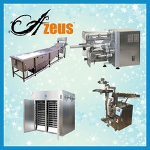 Professional low price mango drying plant /dried fruit process line