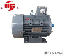 HE2 series high quality three-phase asynchronous electromotor with ISO9001