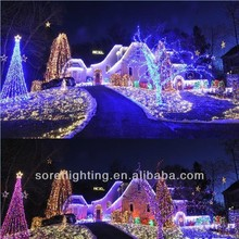 Outdoor Decoration LED Christmas Light/Holiday Light/Light Chain