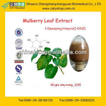 Exwork Price White Mulberry Leaf Extract Powder From GMP Assessment Supplier