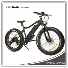 hot selling big tire electric mountain bike/bicycle made in china