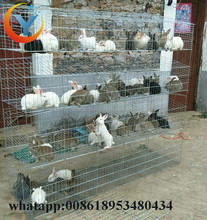 Galvanized Rabbit Cage Design And Cheap Commercial / Industrial Rabbit Cage for sale in Kenya farm