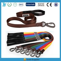 Wholesale High Quality 100% Nylon dog Leashes with lock Carabiner,dog leash