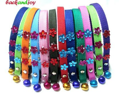 Flowers dog collar