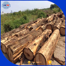 hot sale hinoki wood lumber /hinoki wood boards timber