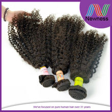 Wholesale Factory Price Supplier Kinky Human Hair Brazilian/Chinese/Indian/Malaysian/Peruvian Hair