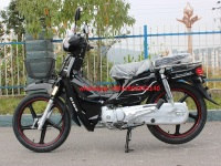 China good quality 50CC 70 CC 90CC 100CC 110CC 125CC CUB motorbike