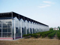 venlo glass greenhouse used commercial greenhouse hydroponic systems greenhouse