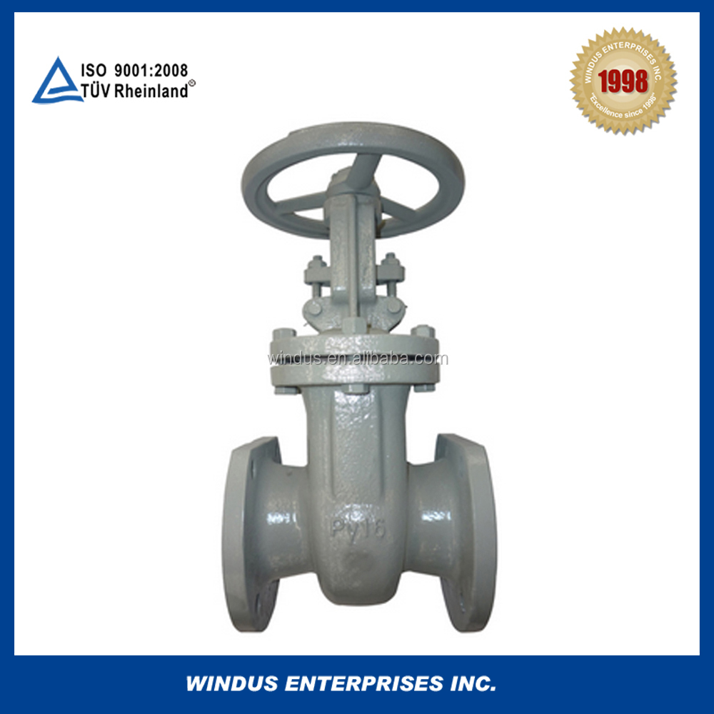 gate valve with stem protector