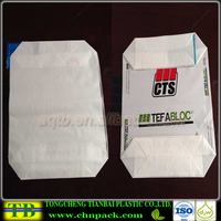 Factory Sale Printed Plastic PE Valve Bag for Chemical