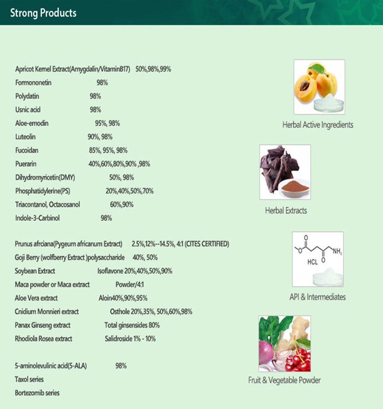 Best Selling Products Stevia Sugar Plant Extract Powder
