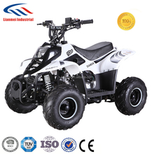 zhejiang atv parts 110cc for sale adults 110cc atv with CE/EPA LMATV-110B