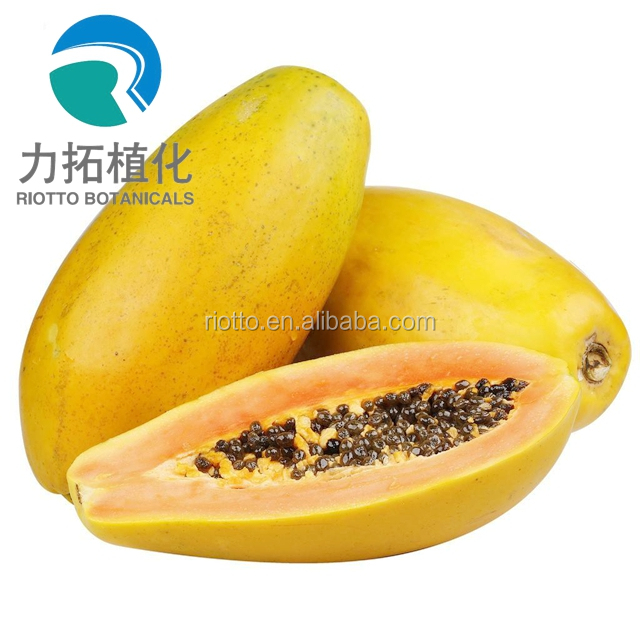 Papaya seeds P.E. powder