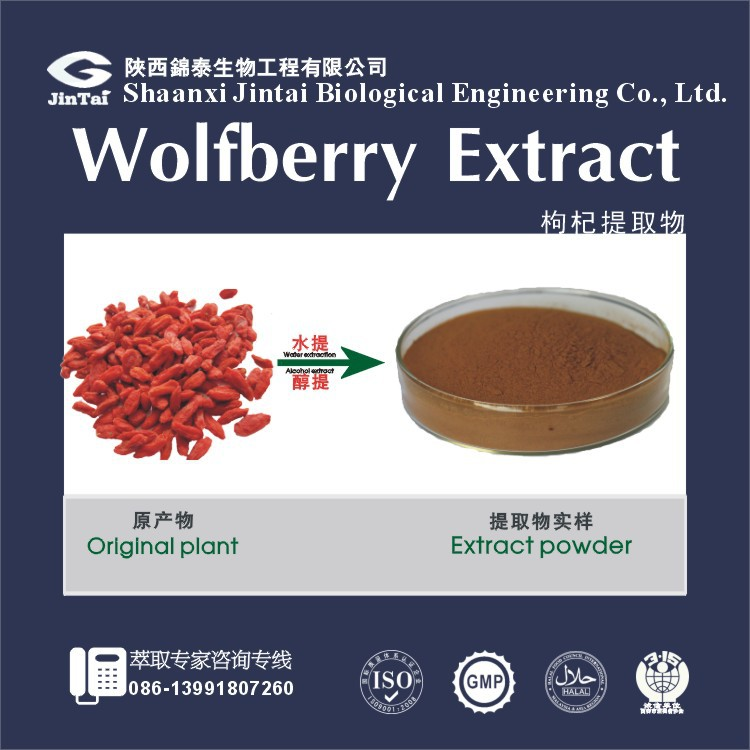 chinese wolfberry/goji berry extract powder 50% polysaccharide wholesale
