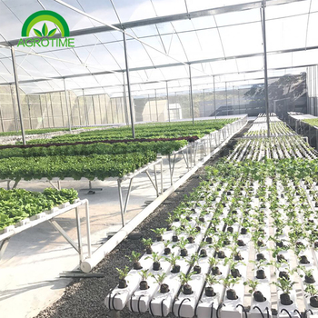 Best price indoor agriculture Hydroponics With Vertical NFT PVC Pipe for Strawberry grow