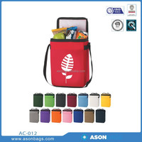 polyester cooler insulated Cooler Bag