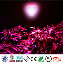 3 years warranty 100x3w high power led grow light diode