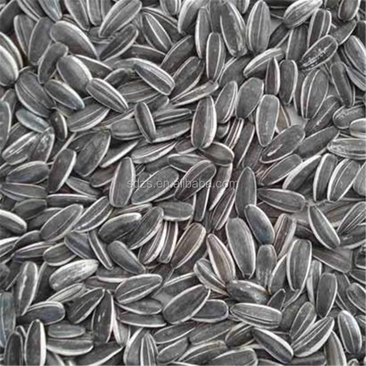 best sale edible sunflower seed