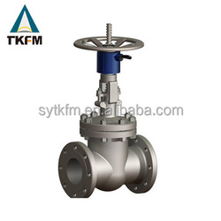 Sale direct buried wc6 gate valve dn 100 with long stem