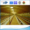 China low cost light steel frame poultry house prefab steel chicken farms building