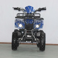 Mini Kids Atv 500W Electric Quad For 14 Years Kids